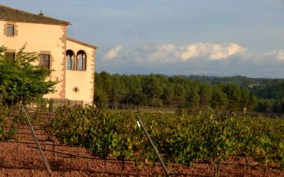 montserrat and wine tour from barcelona discount